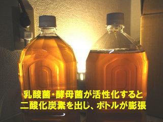 bottlebiger.jpg